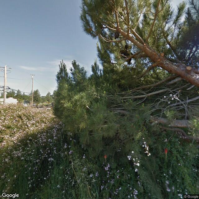 3595 S Gravenstein Hwy,Sebastopol,CA,95472,US